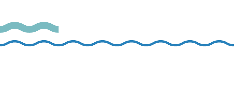 Marine Safety SA logo
